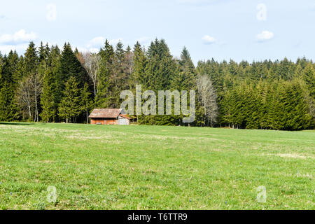 Mountain log cabin in forest. - Stock Photo