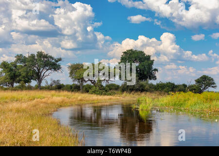 Namibia, typical African landscape - Stock Photo