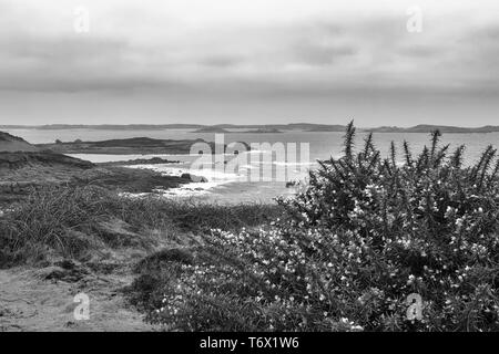View across Crow Sound to the Eastern Isles from Gap Point, St. Mary's, Isles of Scilly, UK on a windy and overcast day: black and white version - Stock Photo