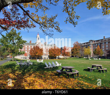 Radcliffe Quadrangle, Harvard University, in the fall. Red dome, white tower, brick buildings, blue sky, green grass, wooden chairs,  autumn leaves… - Stock Photo