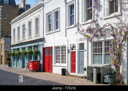 Houses with wisteria and The Queens Arms pub in Queens Gate Mews, South Kensington, London, England - Stock Photo