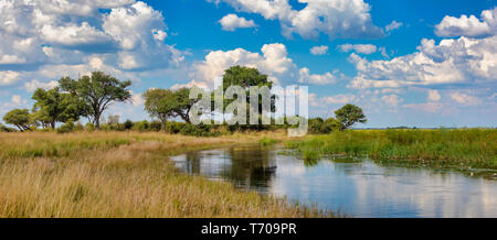 typical African landscape, Bwabwata, Namibia - Stock Photo