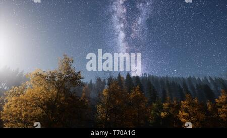 Milky Way stars with moonlight above pine trees forest - Stock Photo
