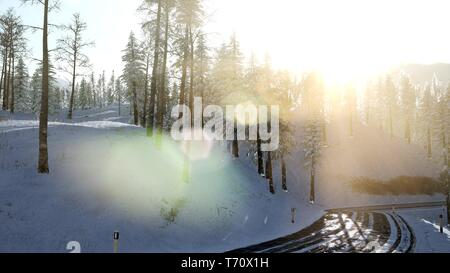 4K Aerial Snow Covered Trees Drone Footage Landscape Winter - Stock Photo