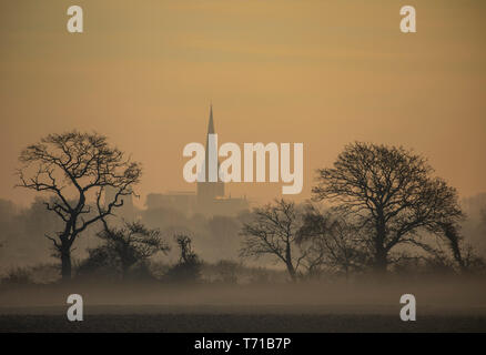 tree silhouette against colourful sky at sunrise - Stock Photo