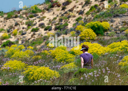A lady in purple walking among the dunes and beautiful wildflowers on the Rota Vicentina between Praia de Odeceixe-Mar and Praia da Azenha do Mar - Stock Photo