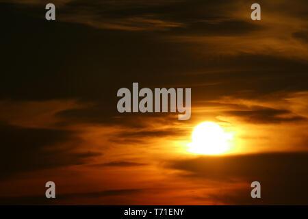 sun dawn on sea silhouette group of fly birds on sky line - Stock Photo