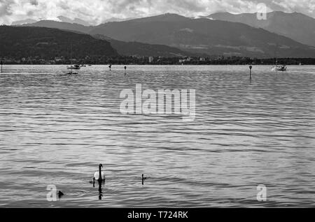 View across Lake Constance towards Austria from Lindau in Lake Constance, Bavaria, Germany, Europe. - Stock Photo
