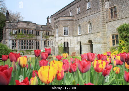 Tissington hall gardens in spring, near Ashbourne in the Peak District National PArk, Derbyshire,England, UK - Stock Photo