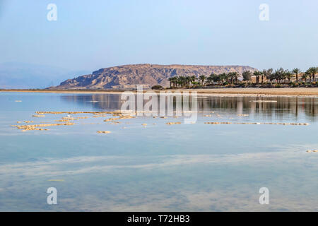 Reflection of mountains and palm trees in the salty water of the Dead Sea. Landscape - Stock Photo