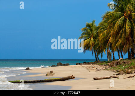 Boats and palms trees in the beach, Corn Island, Caribbean Sea, Nicaragua, Central America, America. - Stock Photo