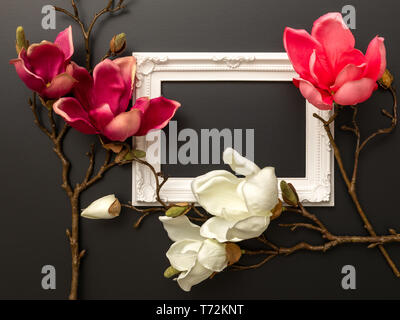 some magnolia flowers on a black background - Stock Photo