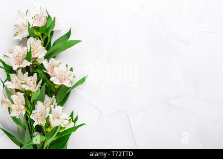 Delicate flowers of Alstroemeria - Stock Photo
