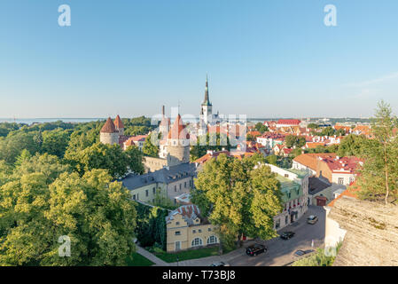 View on Saint Olaf Church from a viewpoint located in the Toompea district of the Old Town at the end of a summer afternoon, Tallinn, Estonia - Stock Photo