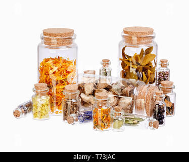 Different healing herbs in glass bottles for herbal medicine isolated on white Stock Photo
