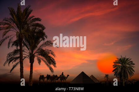 Composite image of silhouetted pyramids, palm trees and a soldier with camels at sunset - Stock Photo