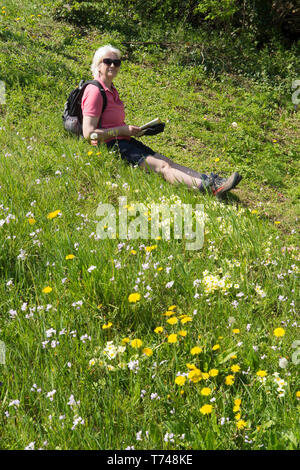 Mature woman in fifties resting while taking a walk in wild flowers, rucksack, map, shorts, appropriate clothing, Sussex, UK. Spring, April. - Stock Photo