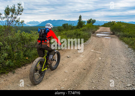 A man fat biking on a dirt road near Eurika on a cloudy summer day in South-central Alaska; Alaska, United States of America - Stock Photo