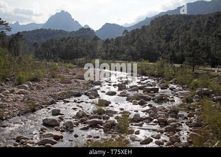 Solenzara river Parc Naturel Regional de Corse Corsica France - Stock Photo