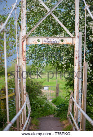Old, rusting, white suspension bridge in green countryside crossing the River Avon at Burgate, Fordingbridge, Hampshire, England, UK - Stock Photo