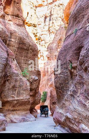 Petra, Jordan - April 06, 2015: Horse drawn carriage riding through the Siq, a 1200 meter long narrow gorge. The Siq is the main entrance to Petra - Stock Photo