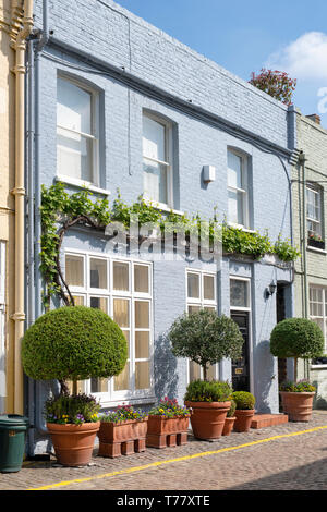 Colourful Houses and small trees and shrubs in containers in Princes Gate Mews, Kensington, London, England - Stock Photo