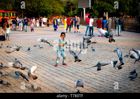 Jaipur, India - circa 2019: Young boy chasing after pigeons in ram niwas gardens in front of albert hall a famous landmark monument in Rajasthan. Show - Stock Photo