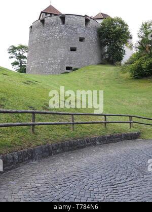 Castle in european capital city of Vaduz in Liechtenstein - vertical - Stock Photo