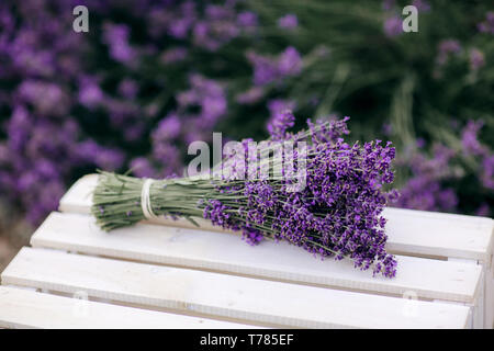 bouquet of lavender. Pile of lavender flower bouquets on a wooden old bench in a summer garden - Stock Photo
