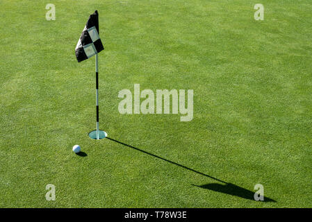 Golf ball on practice putting green next to hole and flag, sunny morning - Stock Photo