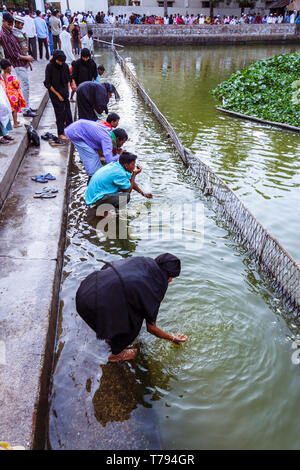 Sylhet, Bangladesh : Pilgrims make their ablutions at the pond filled with sacred catfish at the northern end of the shrine of Hazrat Shah Jalal (a re - Stock Photo