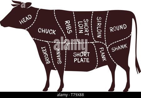 Cow cutting scheme. Butcher shop, beef vector illustration
