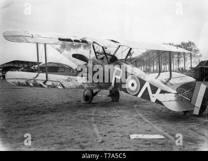 A British Royal Naval Air Service, RNAS, Sopwith Camel F.1 fighter of World War One. Taken at Poperinge in Belgium it has the serial number B7320 and of number 70 squadron. It shows extensive damage due to anti aircraft fire. - Stock Photo