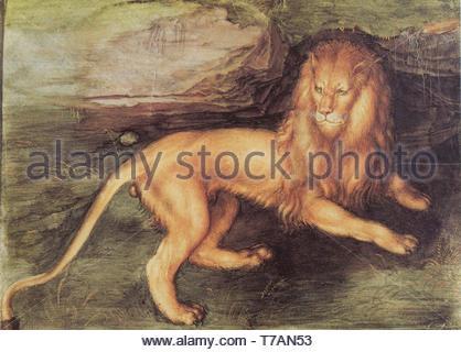 Albrecht-Drer-Lion - Stock Photo