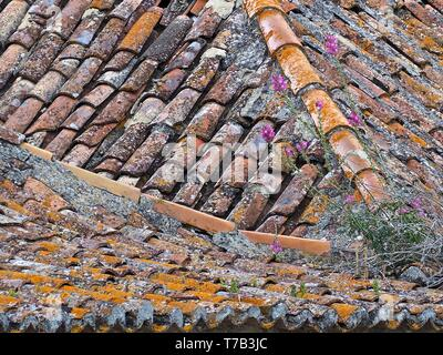 colorful tiles on a roof in Lisbon - Stock Photo