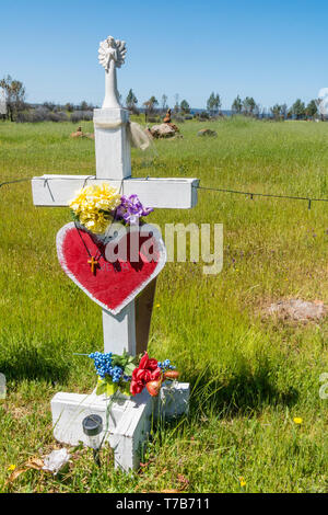 86 crosses were planted to memorialize the victims of the Camp Fire disaster in Paradise, California. The crosses were the idea of Greg Zanis, from Ch - Stock Photo