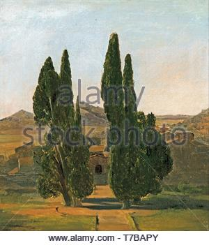 Charles-Lock-Eastlake-Cypress trees at the Villa dEste - Stock Photo