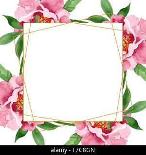 Dark red peony floral botanical flowers. Watercolor background illustration set. Frame border ornament square. - Stock Photo