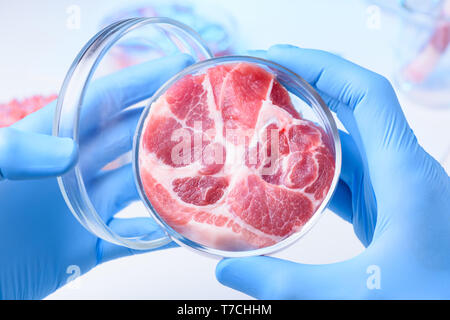 Meat in open laboratory petri dish. Lab meat examination concept. - Stock Photo