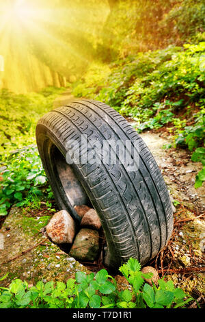 Abandoned car tire standing on a soil pathway in the forest - Stock Photo