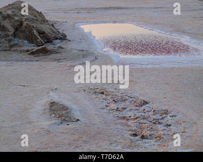 Chott el Djerid - salt lake and salt flats in the salty desert in Tunisia - Stock Photo