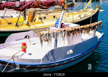 Sun-drying of Octopus pile on a boat. - Stock Photo