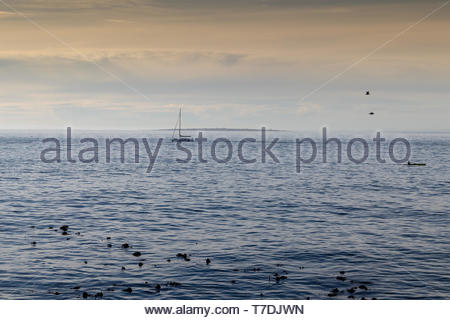 ocean view from Sea Point Promenade in Cape Town with a boat on the horizon at sunset - Stock Photo