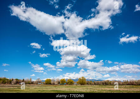 Beautiful blue sky with cumulus clouds; snow capped Rocky Mountains on horizon; Vandaveer Ranch; Salida; Colorado; USA - Stock Photo
