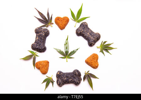 Dog treats and cannabis leaves isolated over white background - CBD and medical marijuana for pets concept - Stock Photo