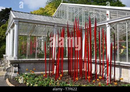 Red Reeds Chihuly glass artwork,  Kew Gardens, London - Stock Photo