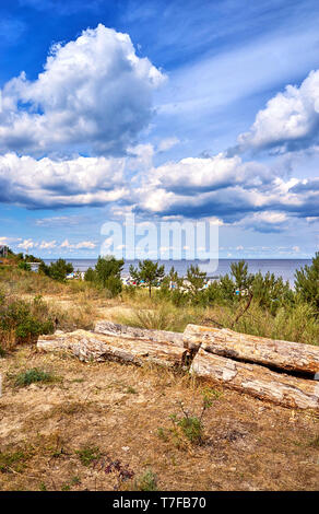 Old wood on the cliff in Ückeritz on the beach. Baltic Sea in Mecklenburg-Vorpommern, Germany. - Stock Photo