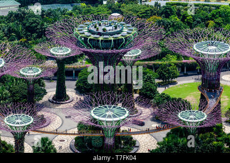 Supertree Grove At The Gardens By The Bay Nature Park, Singapore, South East Asia - Stock Photo