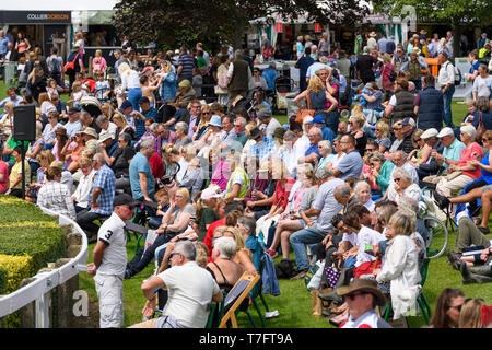 Large crowd of people spectating, gathered around main arena relaxing, sitting in sun, watching event - Great Yorkshire Show, Harrogate, England, UK. - Stock Photo