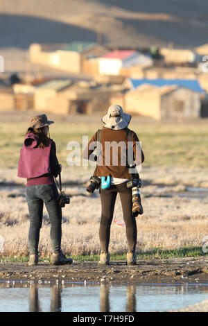 Two female birdwatchers in Mongolia. Doing observations of local bird species. - Stock Photo